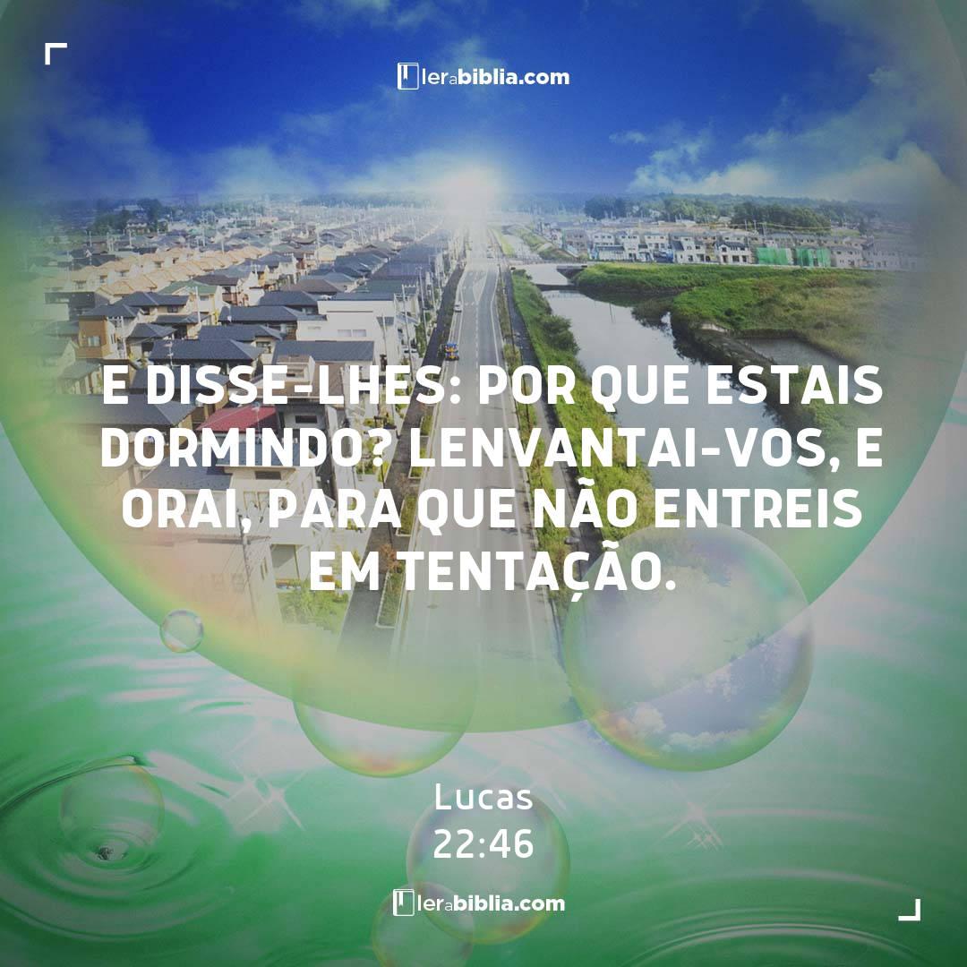 Read more about the article e disse-lhes: Por que estais dormindo? Lenvantai-vos, e orai, para que não entreis em tentação. – Lucas