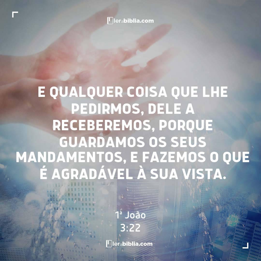 e qualquer coisa que lhe pedirmos, dele a receberemos, porque guardamos os seus mandamentos, e fazemos o que é agradável à sua vista. – 1ª João