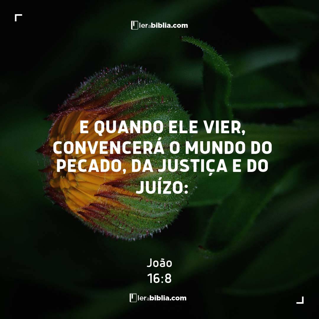 E quando ele vier, convencerá o mundo do pecado, da justiça e do juízo: – João