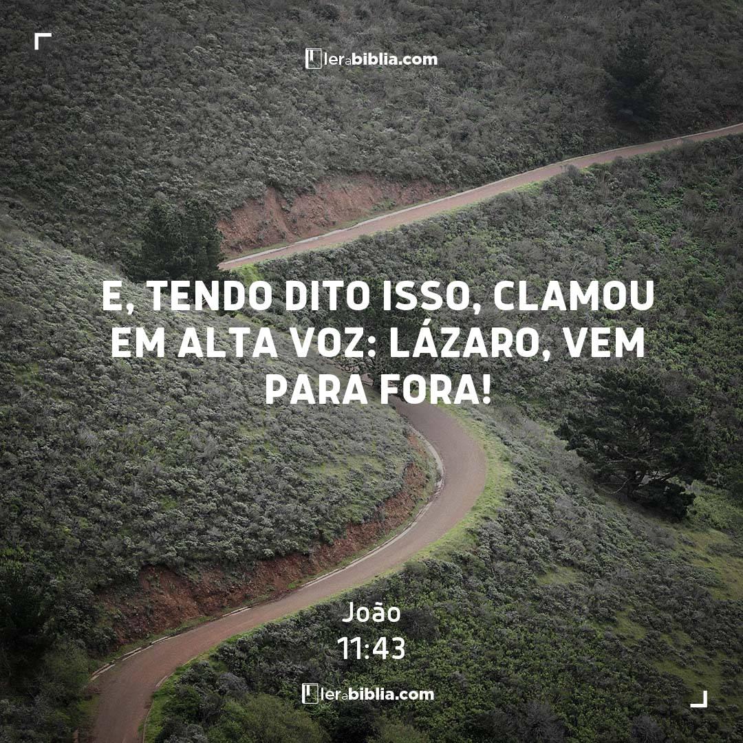 E, tendo dito isso, clamou em alta voz: Lázaro, vem para fora! – João