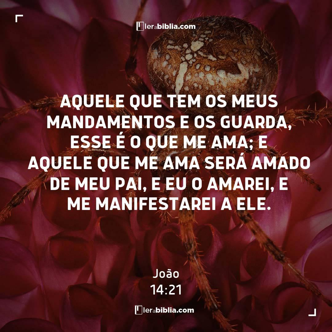 Aquele que tem os meus mandamentos e os guarda, esse é o que me ama; e aquele que me ama será amado de meu Pai, e eu o amarei, e me manifestarei a ele. – João