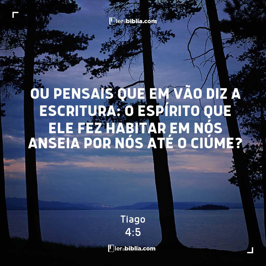 Ou pensais que em vão diz a escritura: O Espírito que ele fez habitar em nós anseia por nós até o ciúme? – Tiago