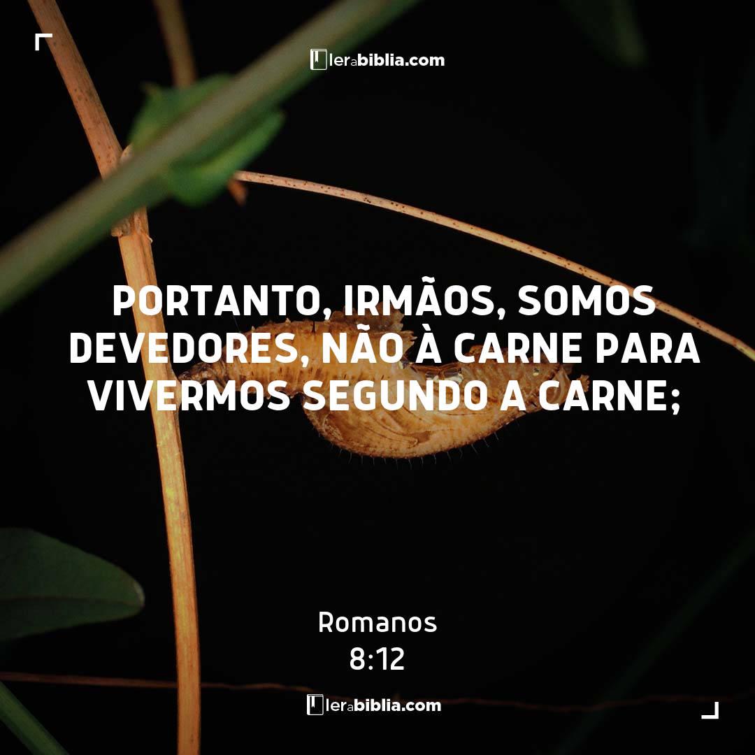 Read more about the article Portanto, irmãos, somos devedores, não à carne para vivermos segundo a carne; – Romanos