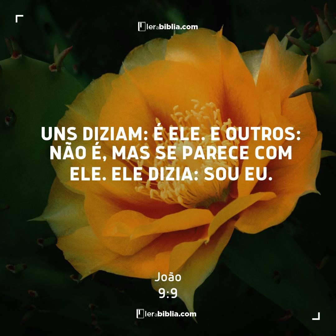 Read more about the article Uns diziam: É ele. E outros: Não é, mas se parece com ele. Ele dizia: Sou eu. – João