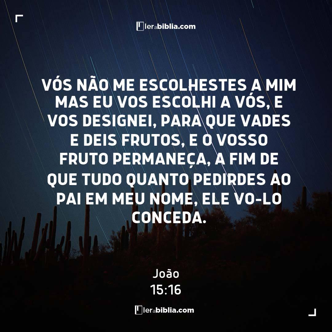 Vós não me escolhestes a mim mas eu vos escolhi a vós, e vos designei, para que vades e deis frutos, e o vosso fruto permaneça, a fim de que tudo quanto pedirdes ao Pai em meu nome, ele vo-lo conceda. - João