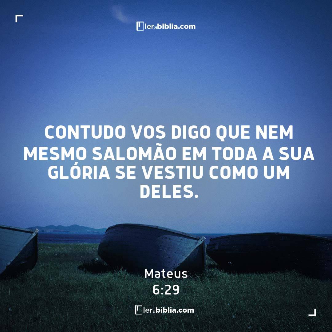 contudo vos digo que nem mesmo Salomão em toda a sua glória se vestiu como um deles. – Mateus