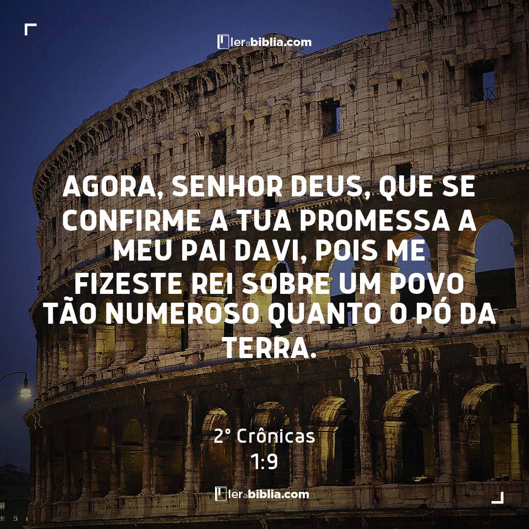 Agora, Senhor Deus, que se confirme a tua promessa a meu pai Davi, pois me fizeste rei sobre um povo tão numeroso quanto o pó da terra. – 2º Crônicas