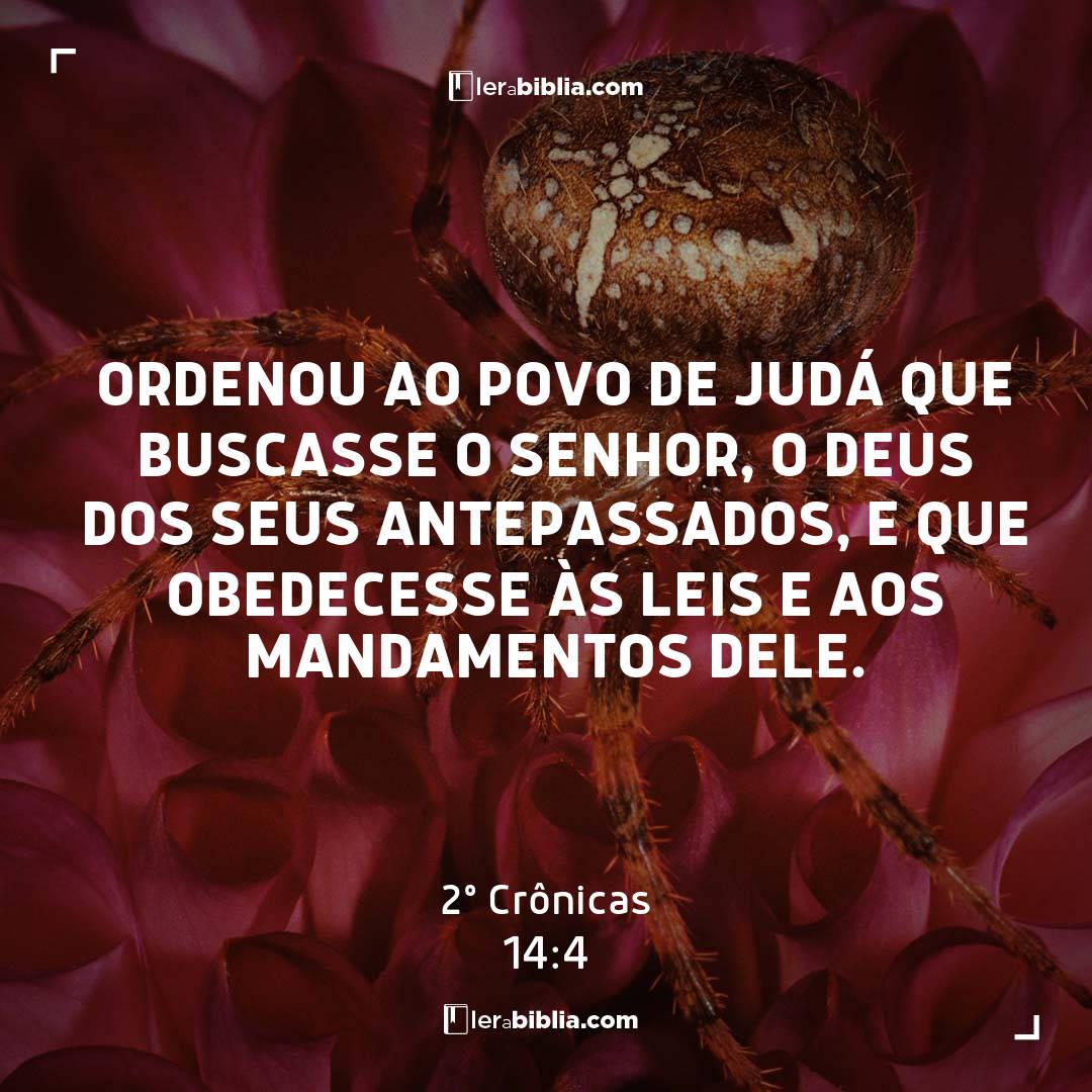 2º Crônicas - 14 - 4 - Ordenou ao povo de Judá que buscasse o Senhor