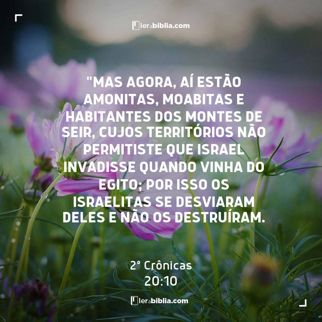 """""""Mas agora, aí estão amonitas, moabitas e habitantes dos montes de Seir, cujos territórios não permitiste que Israel invadisse quando vinha do Egito; por isso os israelitas se desviaram deles e não os destruíram. – 2º Crônicas"""