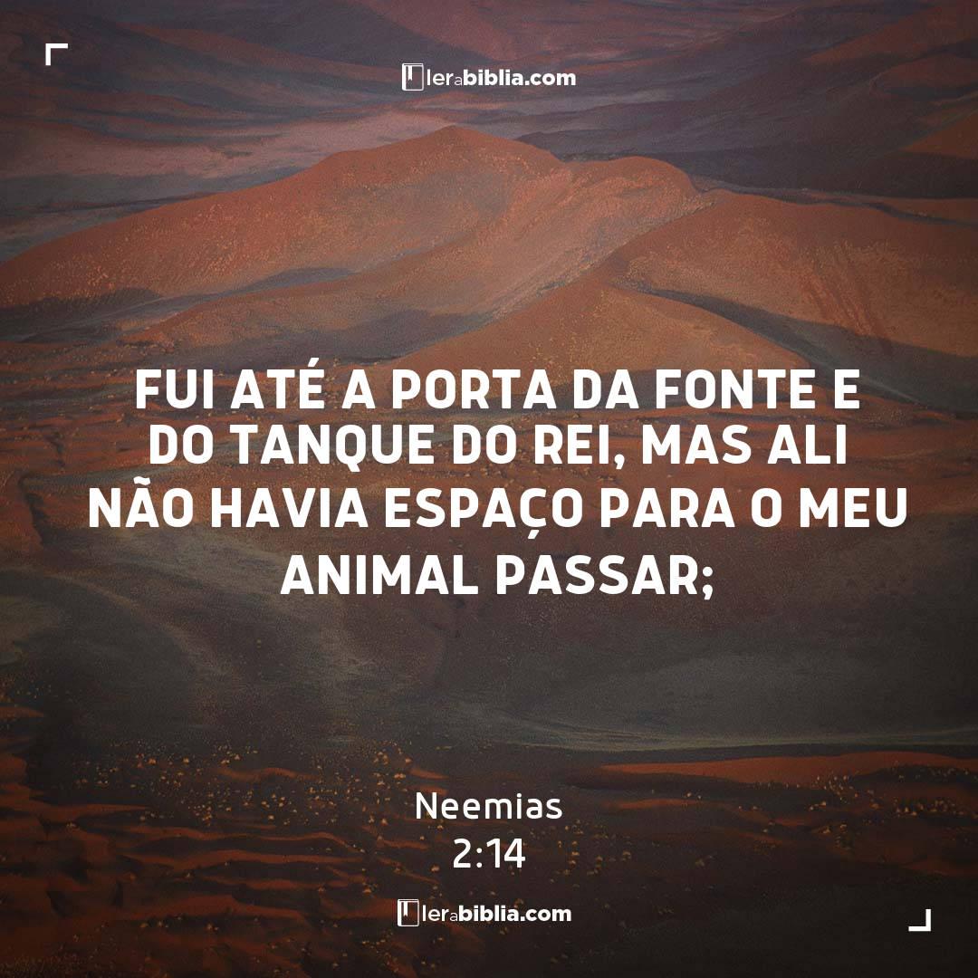 Fui até a porta da Fonte e do tanque do rei, mas ali não havia espaço para o meu animal passar; – Neemias