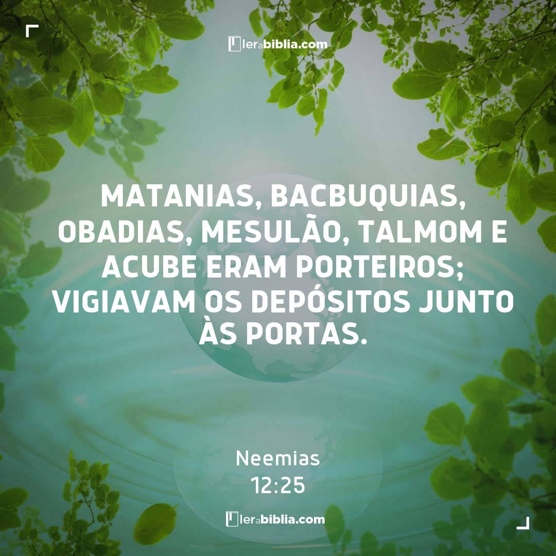 Matanias, Bacbuquias, Obadias, Mesulão, Talmom e Acube eram porteiros; vigiavam os depósitos junto às portas. – Neemias
