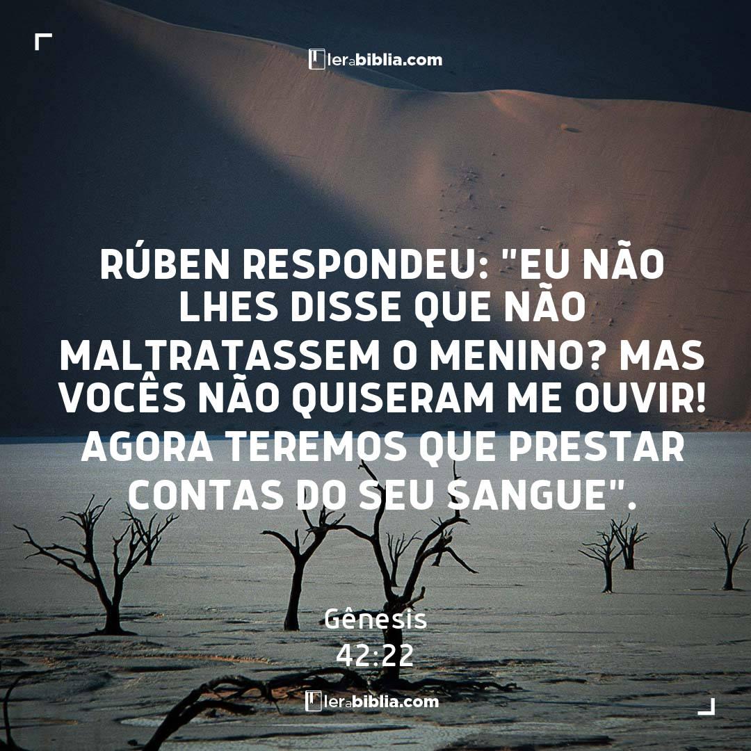 """Rúben respondeu: """"Eu não lhes disse que não maltratassem o menino? Mas vocês não quiseram me ouvir! Agora teremos que prestar contas do seu sangue"""". – Gênesis"""