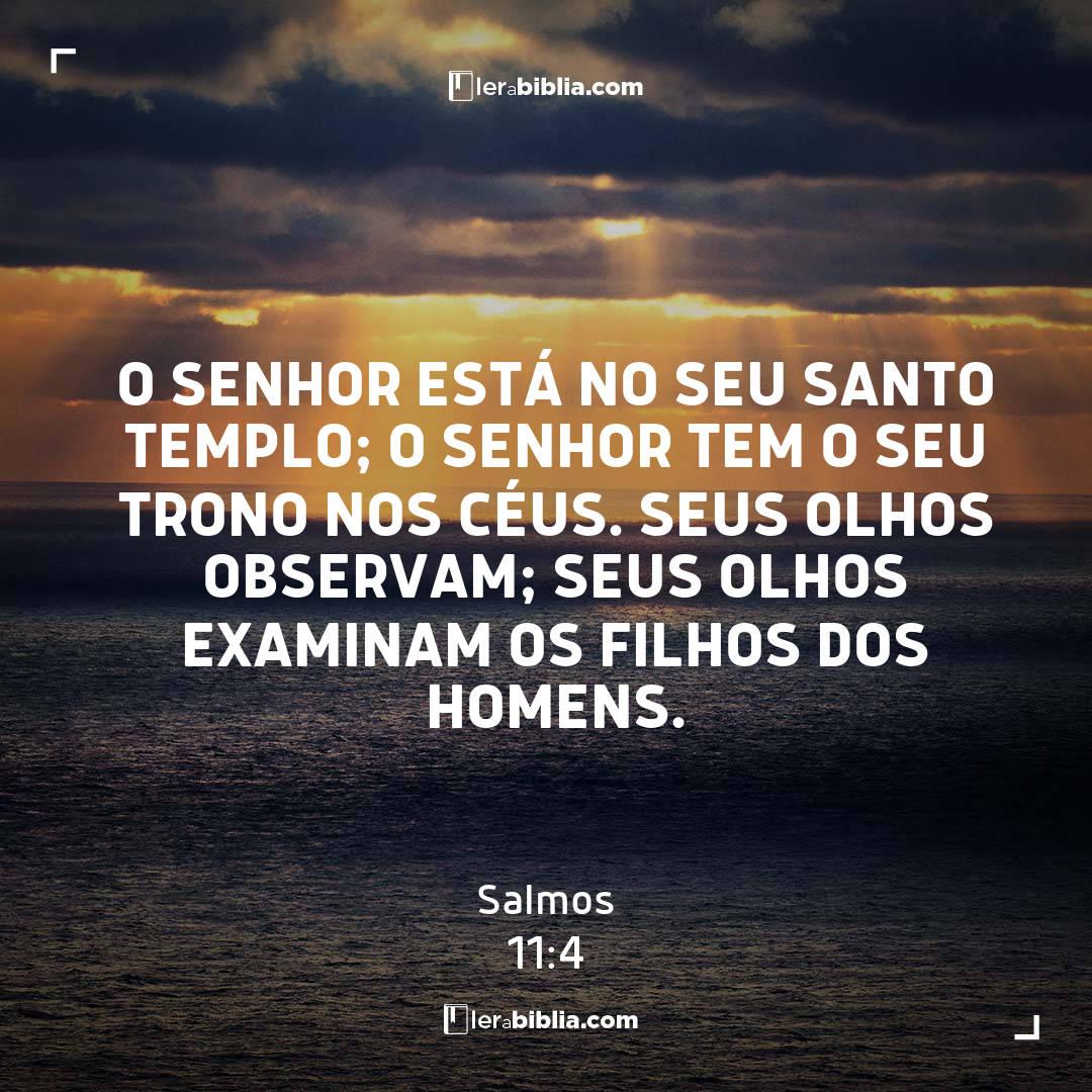 Salmos - 11 - 4 - O Senhor está no seu santo templo; o Senhor tem o seu trono nos céus. Seus olhos observam; seus olhos examinam os filhos dos homens.