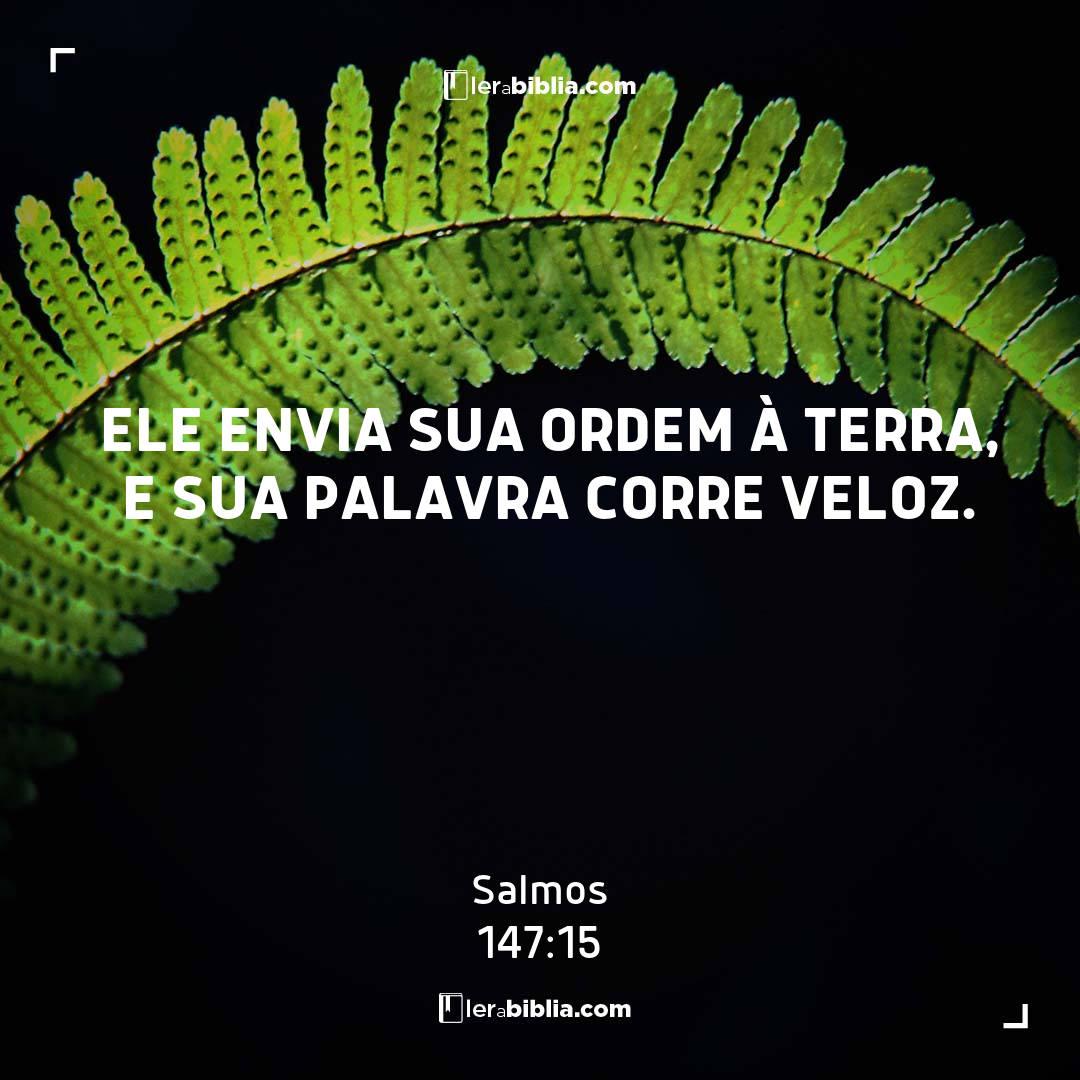 Salmos - 147 - 15 - Ele envia sua ordem à terra