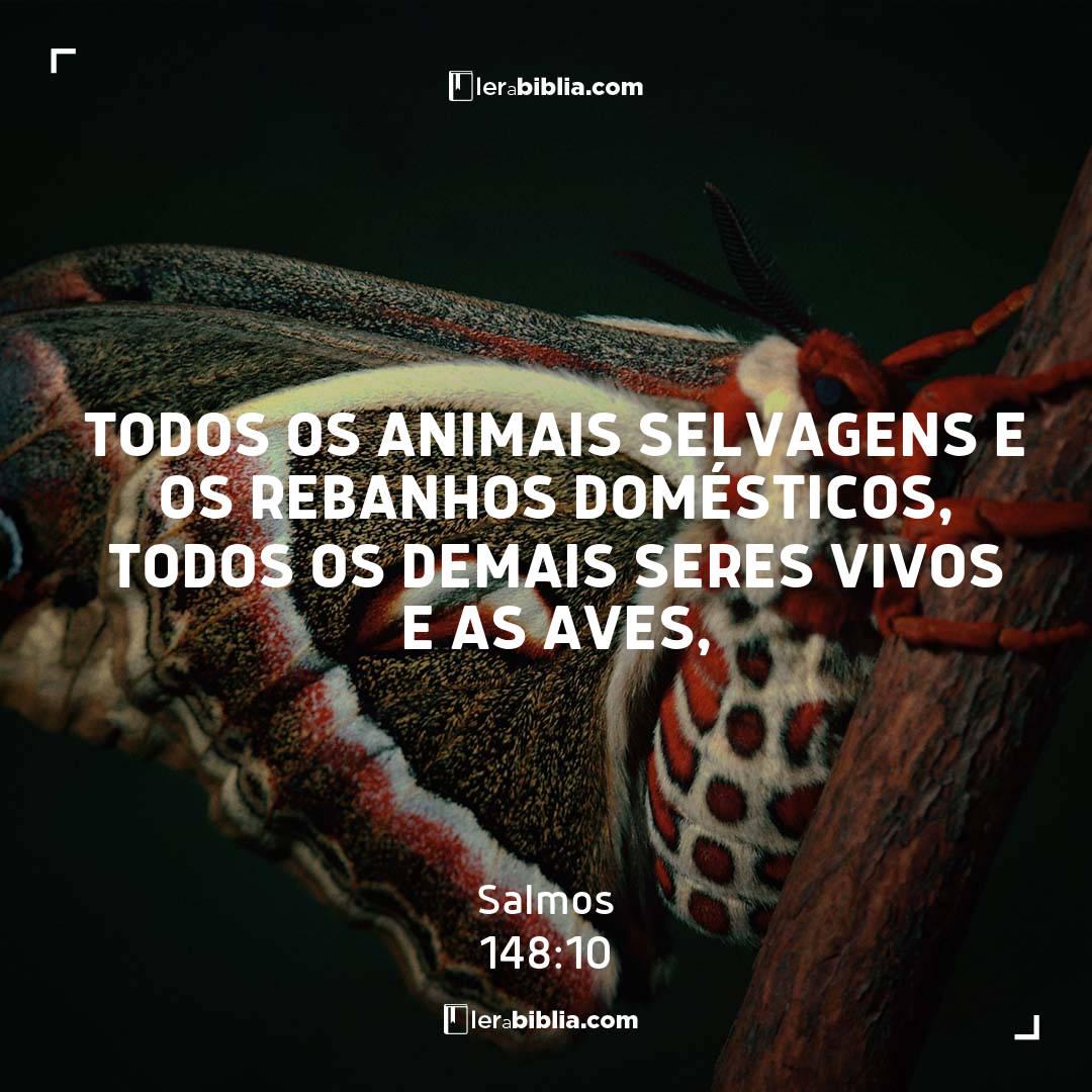 Salmos - 148 - 10 - todos os animais selvagens e os rebanhos domésticos