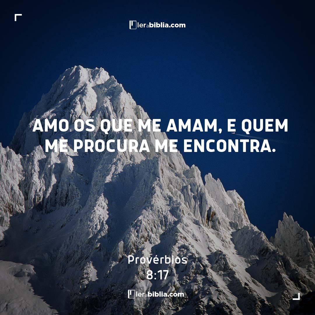 Provérbios - 8 - 17 - Amo os que me amam