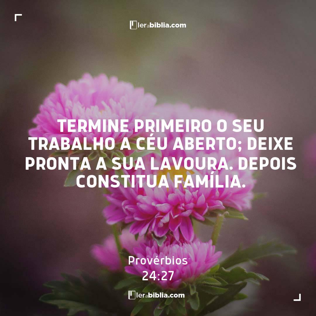Provérbios - 24 - 27 - Termine primeiro o seu trabalho a céu aberto; deixe pronta a sua lavoura. Depois constitua família.