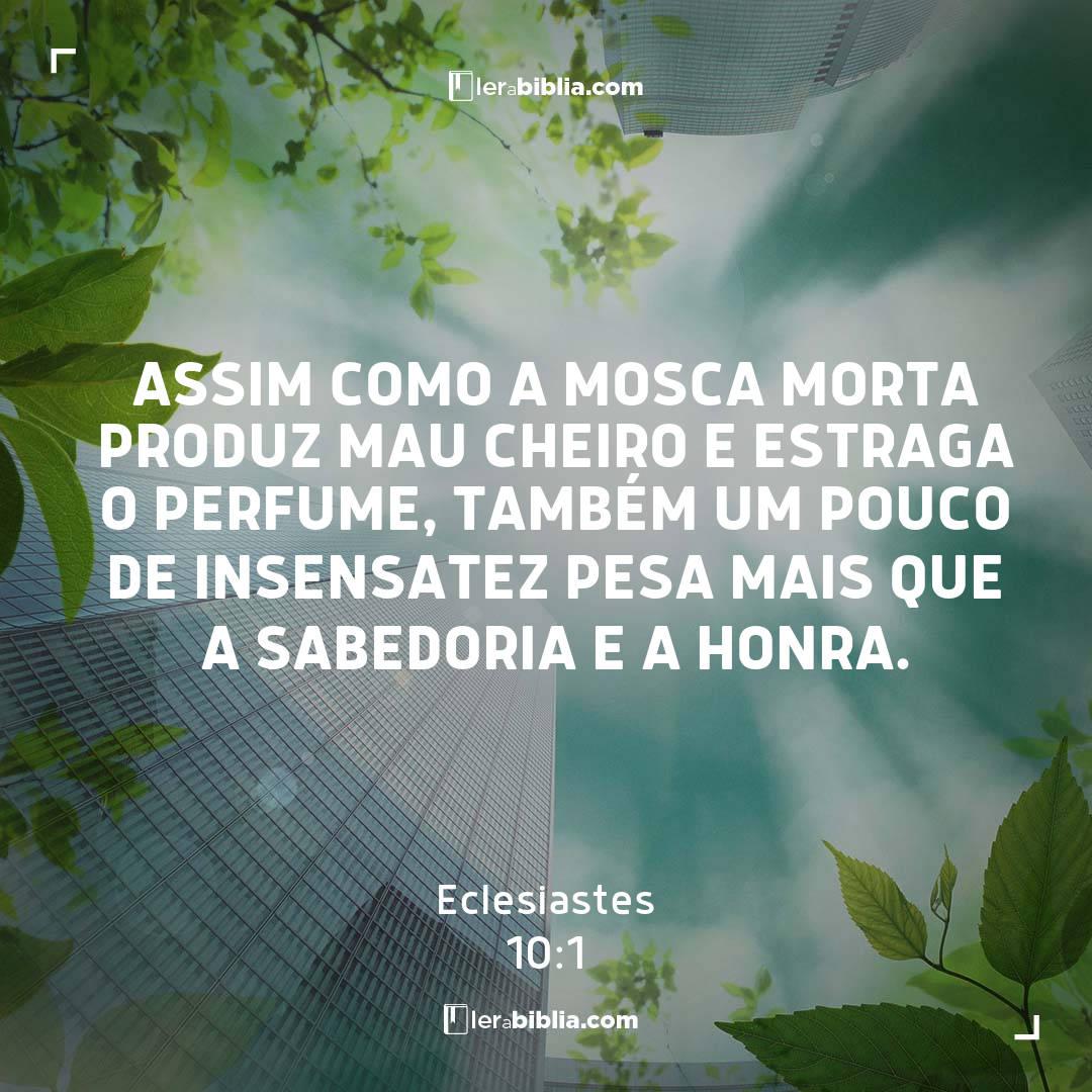 Eclesiastes - 10 - 1 - Assim como a mosca morta produz mau cheiro e estraga o perfume