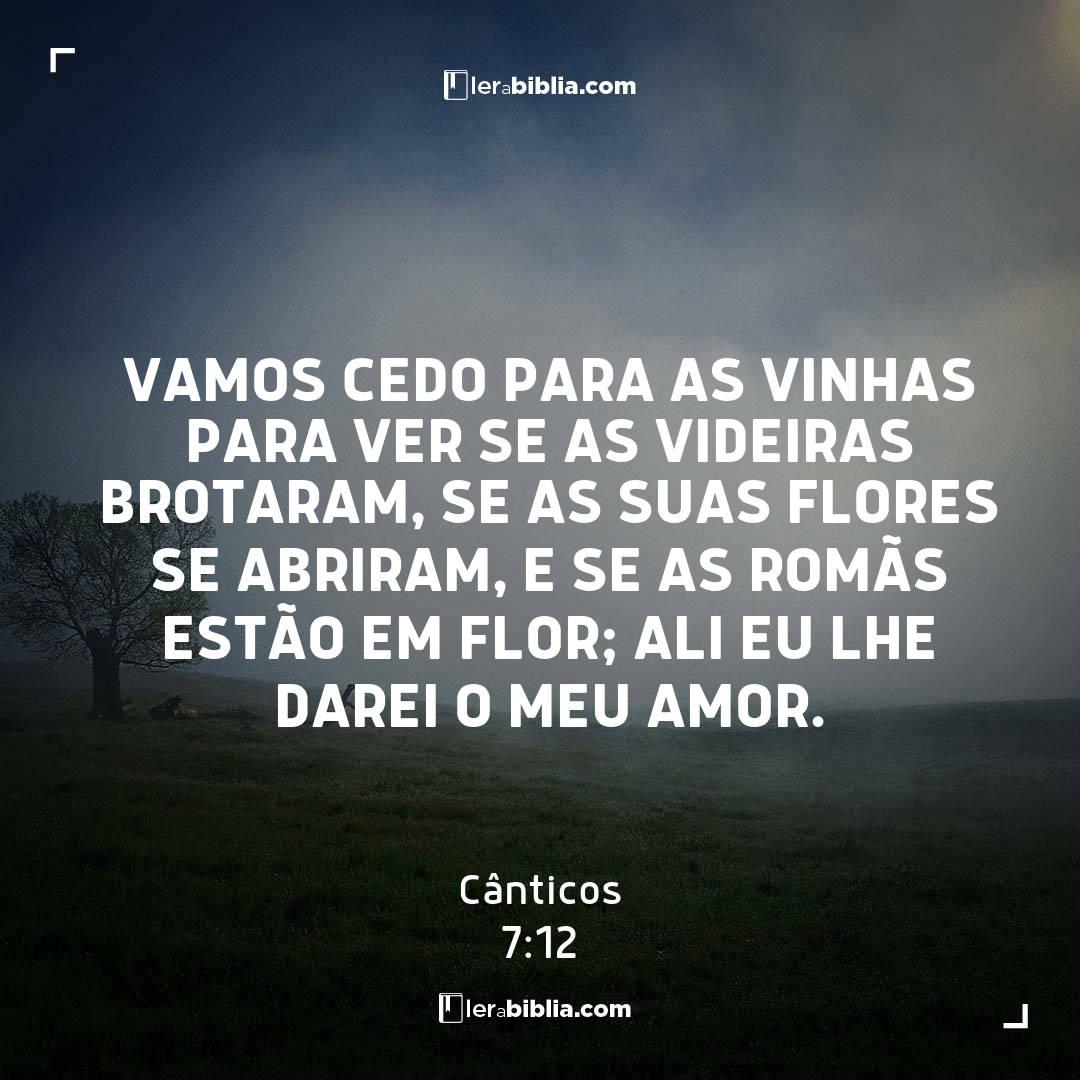 Vamos cedo para as vinhas para ver se as videiras brotaram, se as suas flores se abriram, e se as romãs estão em flor; ali eu lhe darei o meu amor. – Cânticos