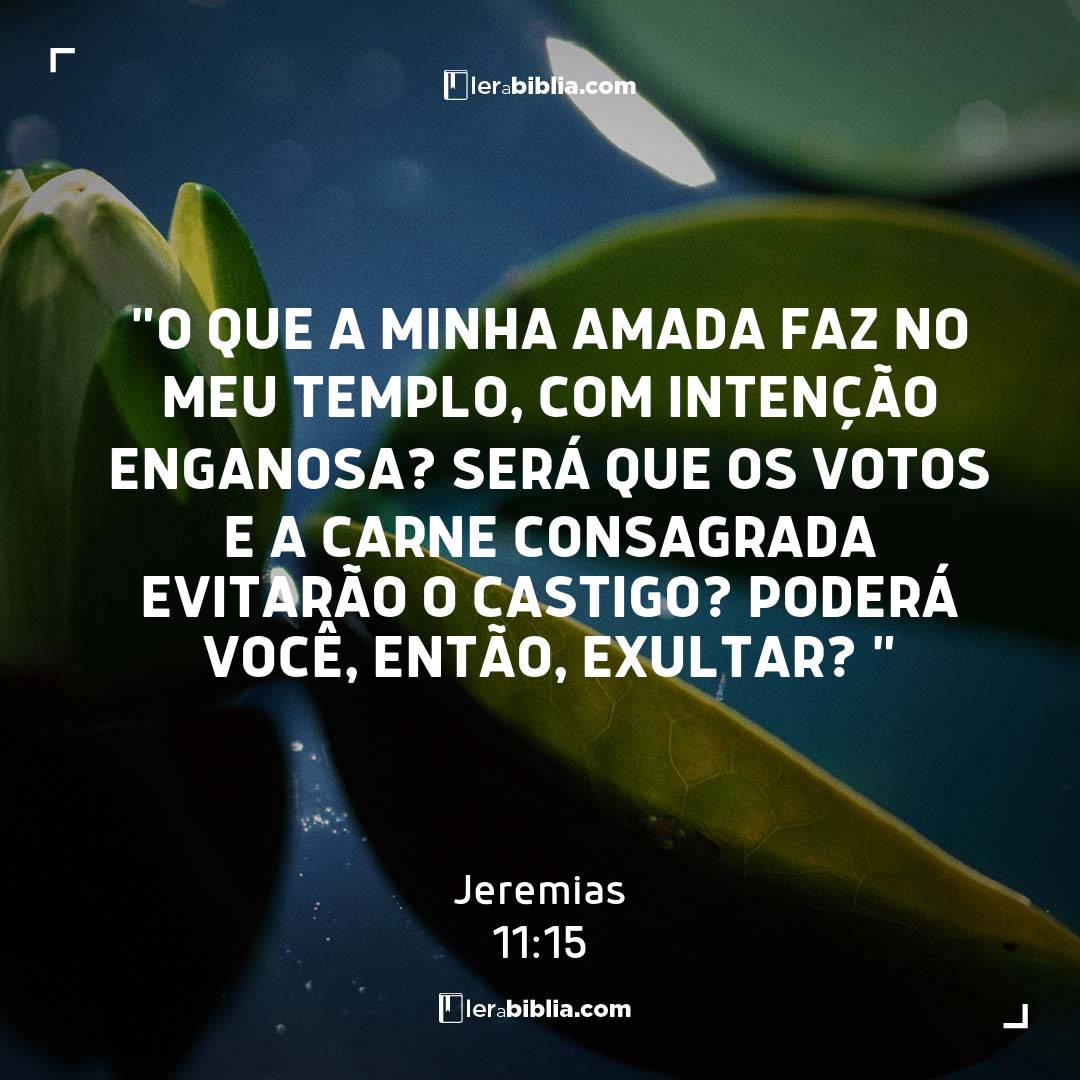 """""""O que a minha amada faz no meu templo, com intenção enganosa? Será que os votos e a carne consagrada evitarão o castigo? Poderá você, então, exultar? """" – Jeremias"""