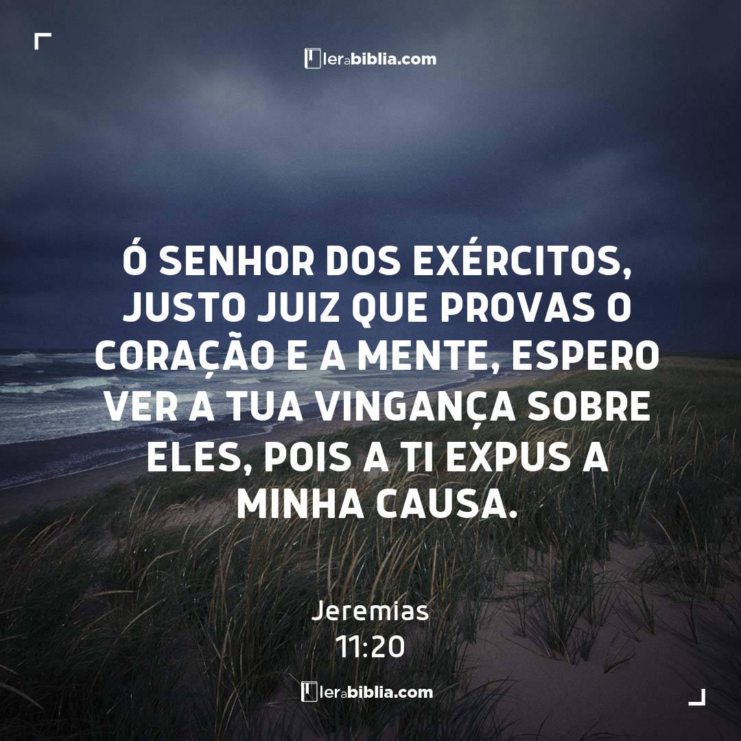 Ó Senhor dos Exércitos, justo juiz que provas o coração e a mente, espero ver a tua vingança sobre eles, pois a ti expus a minha causa. – Jeremias