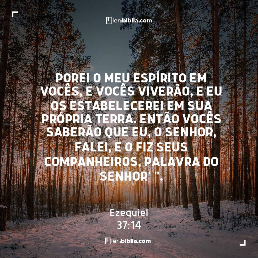 """Porei o meu Espírito em vocês, e vocês viverão, e eu os estabelecerei em sua própria terra. Então vocês saberão que eu, o Senhor, falei, e o fiz seus companheiros, palavra do Senhor' """". – Ezequiel"""
