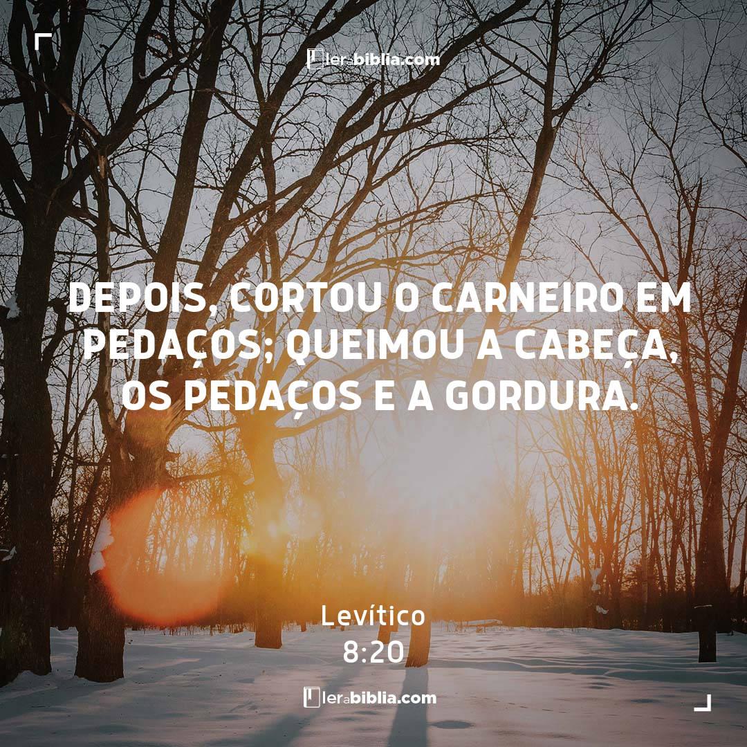 Levítico - 8 - 20 - Depois