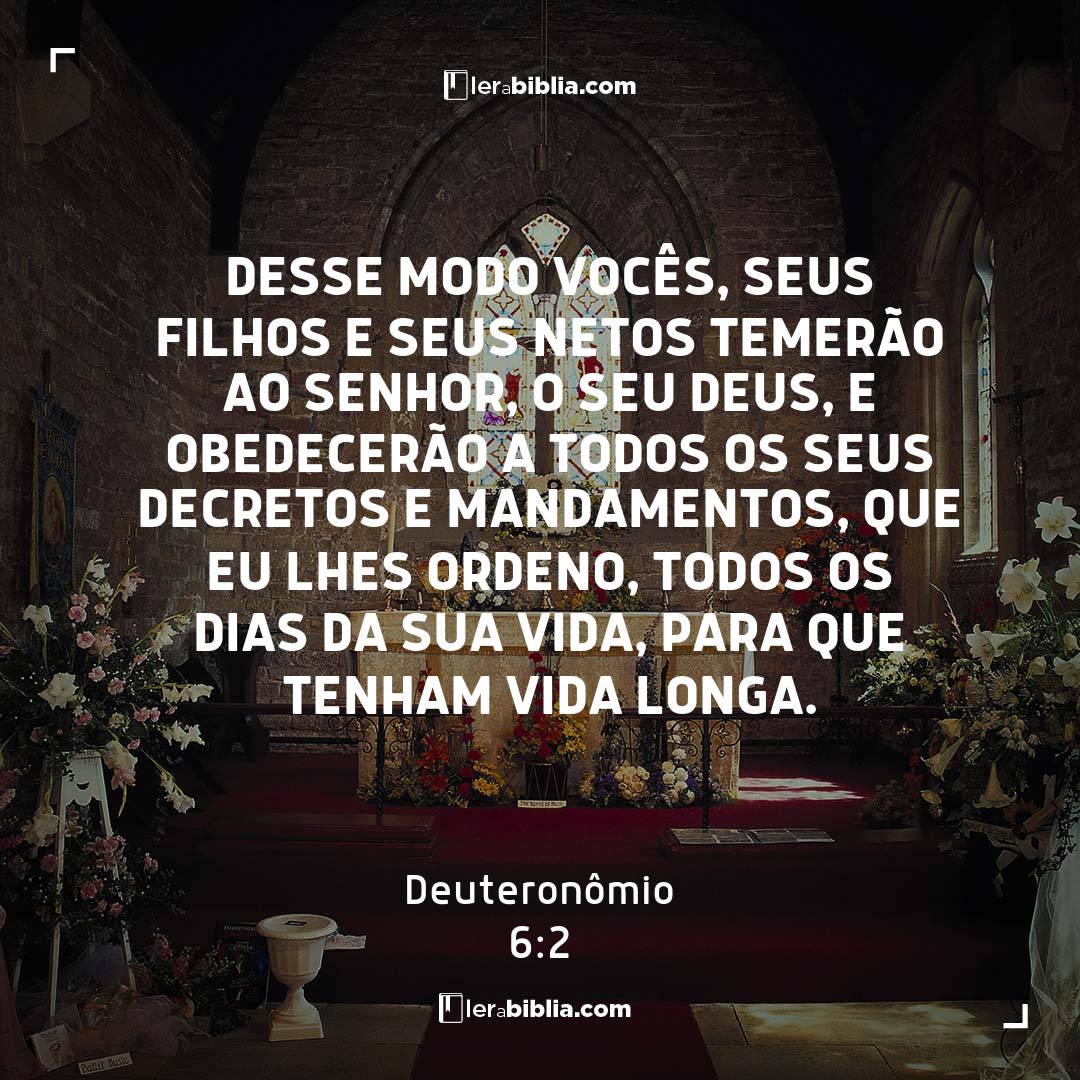 Desse modo vocês, seus filhos e seus netos temerão ao Senhor, o seu Deus, e obedecerão a todos os seus decretos e mandamentos, que eu lhes ordeno, todos os dias da sua vida, para que tenham vida longa. – Deuteronômio