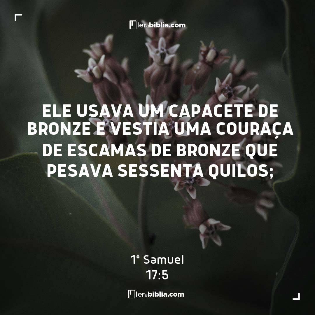 Ele usava um capacete de bronze e vestia uma couraça de escamas de bronze que pesava sessenta quilos; – 1º Samuel