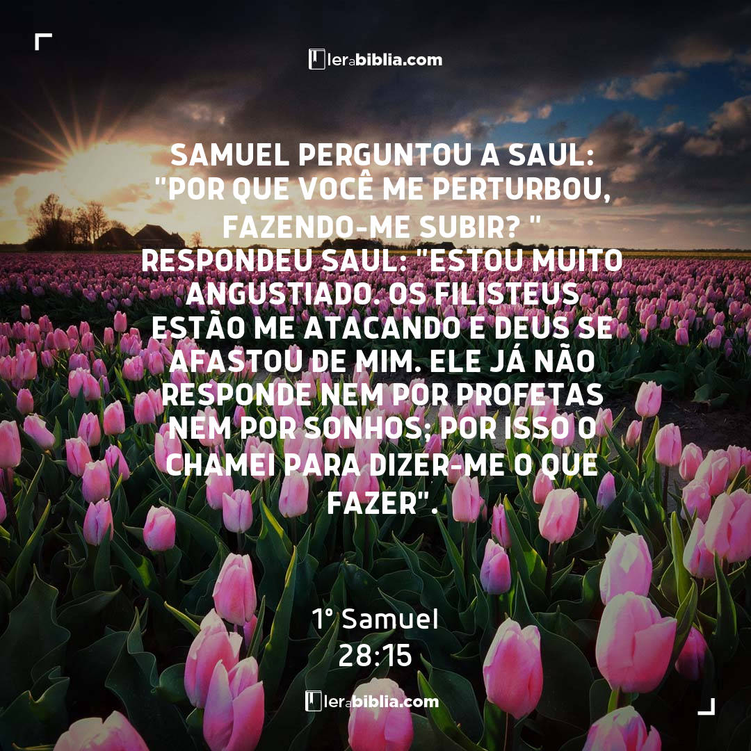 """Samuel perguntou a Saul: """"Por que você me perturbou, fazendo-me subir? """" Respondeu Saul: """"Estou muito angustiado. Os filisteus estão me atacando e Deus se afastou de mim. Ele já não responde nem por profetas nem por sonhos; por isso o chamei para dizer-me o que fazer"""". – 1º Samuel"""